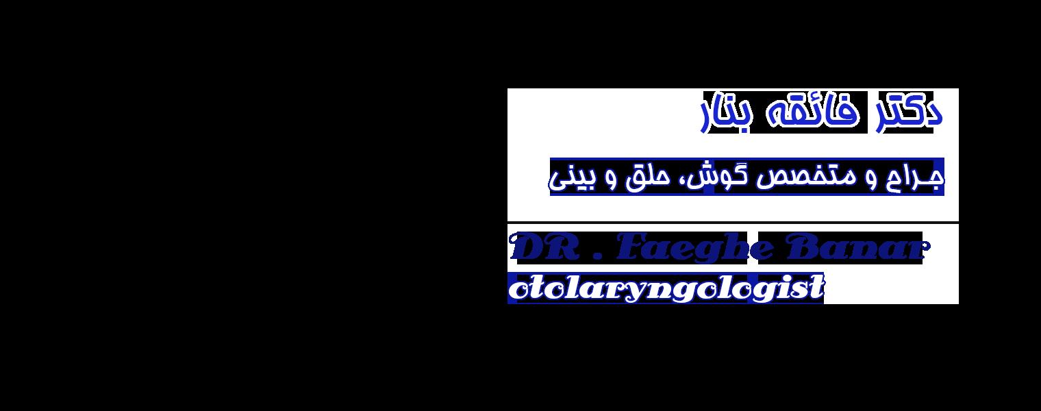 banner3-2.jpg